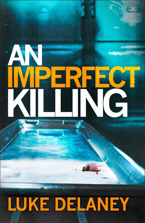 An Imperfect Killing - Luke Delaney