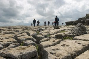 Limestone Pavement, Malham Cove