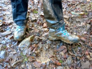Thoroughly recommended for an Exmoor walk